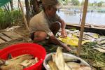 Thừa Thiên - Huế: Tìm ra nguyên nhân hơn 300 lồng cá chết trên sông Đại Giang