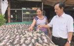 """Đồng Tháp: Ra mắt nhãn hiệu hàng hóa """"khô Phú Thọ"""""""