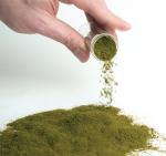 Vi tảo trong sản xuất tôm giống