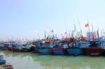 Kiên Giang: Còn nhiều tàu cá vi phạm vùng biển nước ngoài