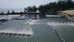 Thừa Thiên - Huế: Nguy cơ ô nhiễm biển Quảng Điền từ nuôi tôm