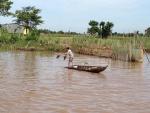 Đồng Tháp: Đánh bắt thủy sản mùa cá ra