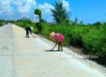 Bạc Liêu: Ngư dân trúng mùa con ruốc