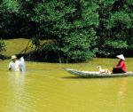 Cà Mau: Sức bật thủ phủ ngành tôm
