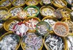 Công cụ mới về đánh giá thủy sản bền vững