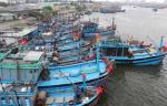 Nan giải nơi neo đậu tàu cá