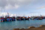 22 tàu cá tránh trú bão số 7 tại Âu tàu Sinh Tồn