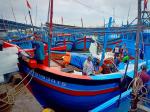 Khánh Hòa: Tăng cường kiểm tra vi phạm trong khai thác thủy sản
