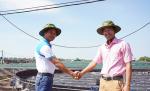 C.P. Việt Nam: Mô hình CPF-COMBINE phiên bản 2