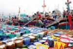 Hội Nghề cá Việt Nam: Song hành cùng ngư dân