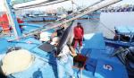 Nghề cá Việt Nam: Hướng đến hiện đại và có trách nhiệm