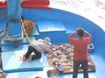 Ngư dân Bình Định mở cửa biển đầu năm mới
