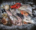 Thủy sản thế giới 2020: Sản lượng tăng, giá giảm