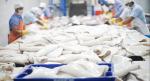 Peru: Tạm dừng xuất khẩu thủy sản sang Trung Quốc do đóng cửa cảng biển