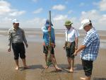 Sóc Trăng: Khảo sát nguồn nghêu giống ven bờ biển