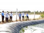 Sóc Trăng: Huyện Mỹ Xuyên đã cải tạo gần 13.000 ha nuôi tôm