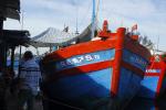 Quảng Ngãi: Từ 1/4, cấm ra khơi tàu cá từ 15 m không lắp giám sát hành trình