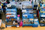 Dự báo nhập khẩu thủy sản của Hàn Quốc sẽ phục hồi
