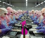 Cơ hội mới tại thị trường Trung Quốc