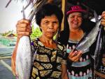 Philippines: Thức ăn chức năng cho cá măng sữa   vào mùa đông