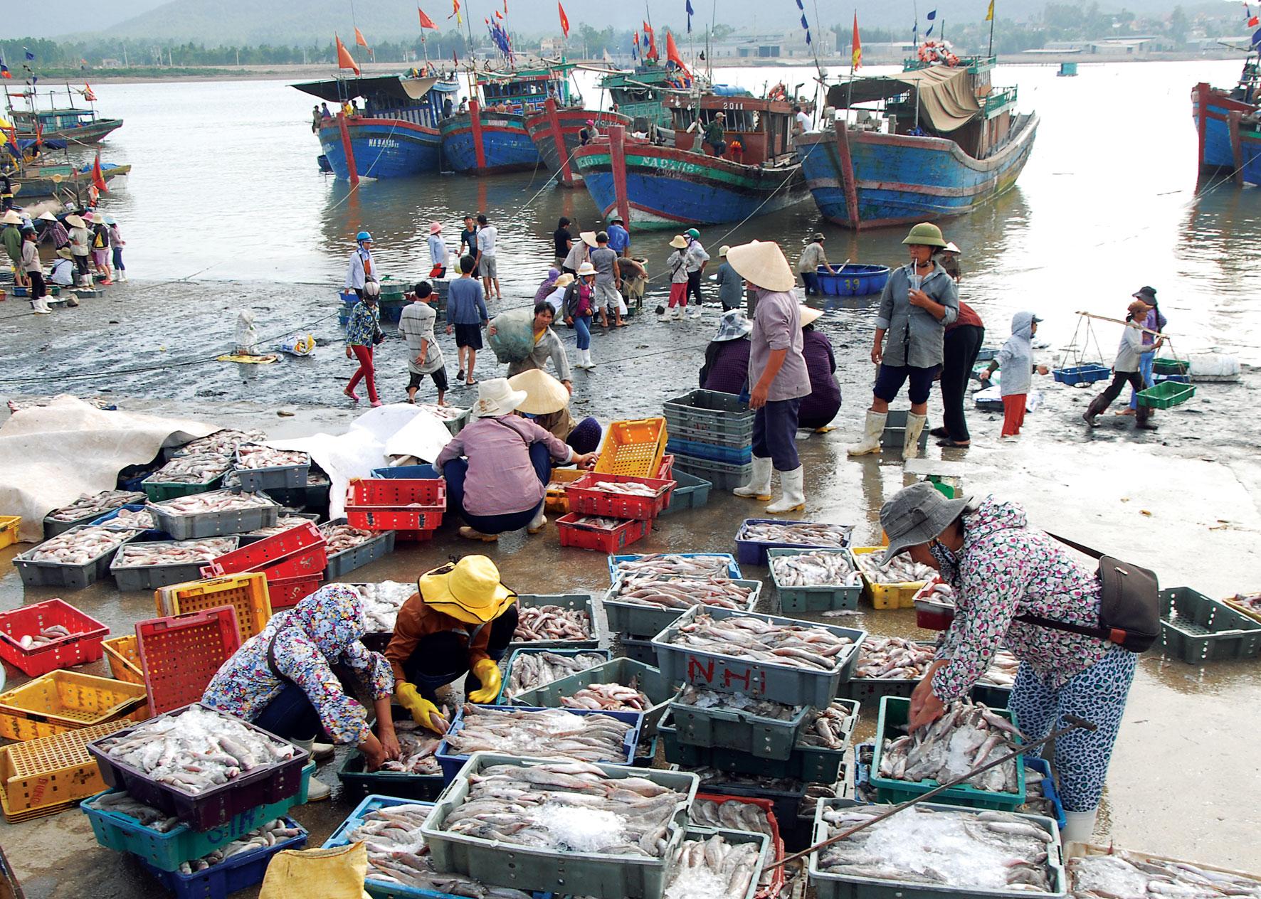 Nghệ An: Gian nan hành trình NTM xã bãi ngang ven biển