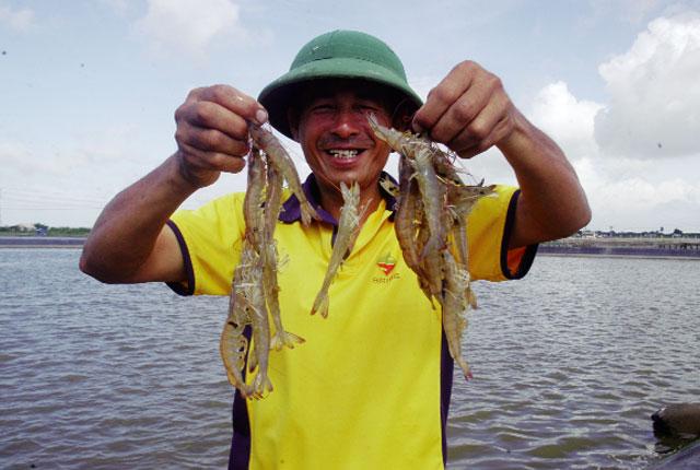 Chất lượng vàng thủy sản: Tôn vinh những tấm gương đẹp