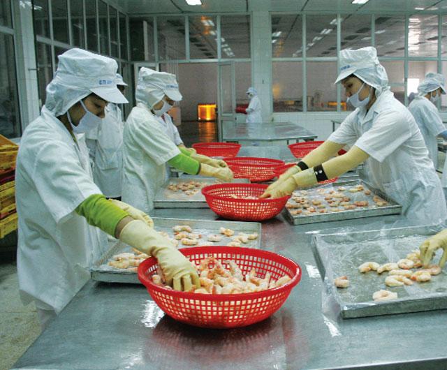 Peru: Xuất khẩu tôm nhắm vào thị trường châu Á