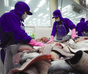 Hướng mở cho Thủy sản Việt: Chuỗi giá trị toàn cầu