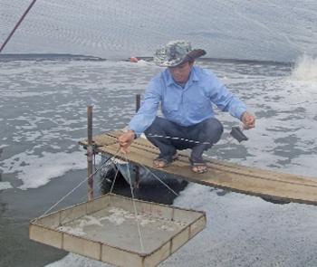Biện pháp chống rét cho thủy sản