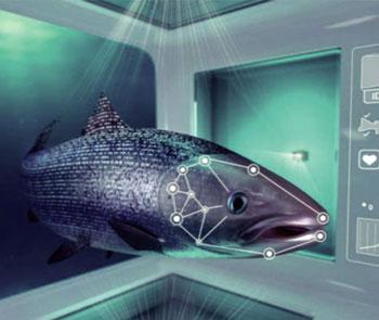 Những sản phẩm mới từ chất thải trong ao cá