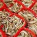 Quy trình nuôi tôm theo công nghệ Biofloc