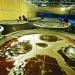 Hệ thống lọc tuần hoàn trong nuôi trồng thủy sản