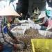 Nuôi ốc hương ở xã Vạn Thọ (Vạn Ninh, Khánh Hòa): Kẻ khóc, người cười