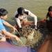 """NTM Ninh Bình: """"Thay da đổi thịt"""" tại các xã bãi ngang ven biển Kim Sơn"""