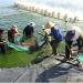 """THÔNG CÁO BÁO CHÍ HỘI NGHỊ: """"Bàn giải pháp phát triển thủy sản bền vững các tỉnh miền Trung"""""""
