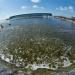 Trúc Anh: Thành công mô hình nuôi tôm siêu thâm canh 2 giai đoạn