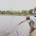 Đề nghị chủ tịch tỉnh Cà Mau xem xét công bố thiên tai đối với tôm