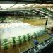 Nuôi trồng thủy sản trong điều kiện biến đổi khí hậu (Phần 1)