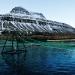 "Trại cá hồi ""xanh"" ở Iceland"