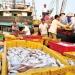 Hội Nghề cá Việt Nam: Nhiều biện pháp hỗ trợ nông dân, ngư dân