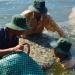 Đột phá công nghệ phát triển ngành tôm