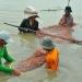 Quảng Nam: Nuôi tôm công nghiệp tập trung khép kín