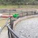 Thái Nguyên: Đẩy mạnh phát triển thủy sản