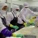 An toàn vệ sinh thực phẩm: Chìa khóa mở cửa thế giới