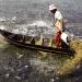 Cần Thơ: Hiệu quả nuôi cá tra của HTX Thắng Lợi