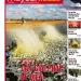 Thủy sản Việt Nam số 13 - 2017 (260)