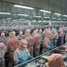 Tập đoàn Minh Phú:  Lãi quý II cao gấp 34 lần cùng kỳ năm trước