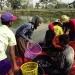 Myanmar: Chiến lược phát triển ngành rô phi