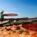Làng biển vào mùa khô Tết