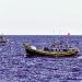 Quảng Ngãi: Kiểm soát khai thác thủy sản bất hợp pháp